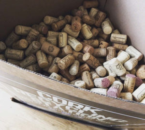 Corks in recycling bin