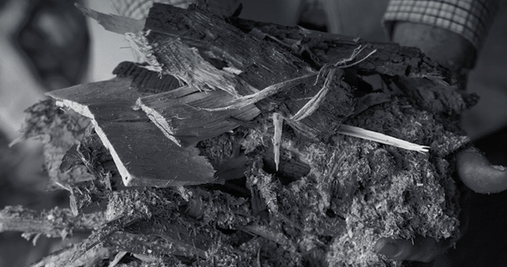 Photo of dry firewood being held in hands